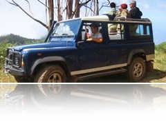 Package 06 - Any mixture of 3 full day tours / walks + 1 half day jeep tour
