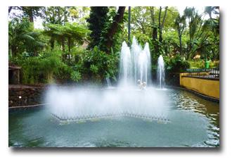 Funchal-Garden-3D