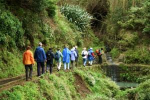 Madeira Walks Levada